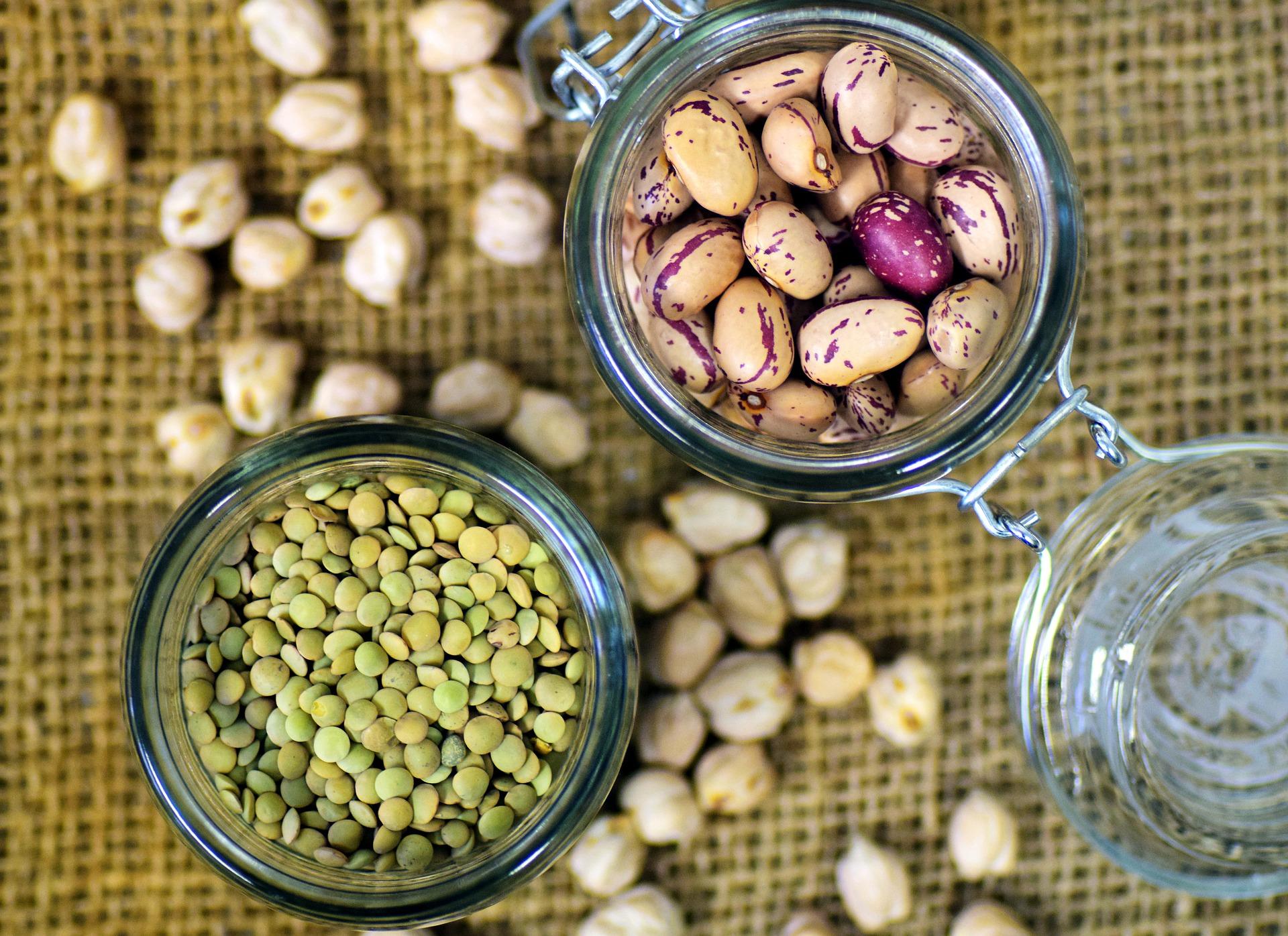 Proteína vegetal vs. proteína animal