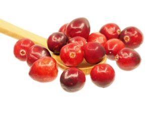 arandano rojo para cistitis